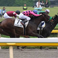 写真: ムードティアラ レース(15/05/09・12R)