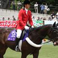 写真: 東京競馬場 誘導馬_2(15/05/23)