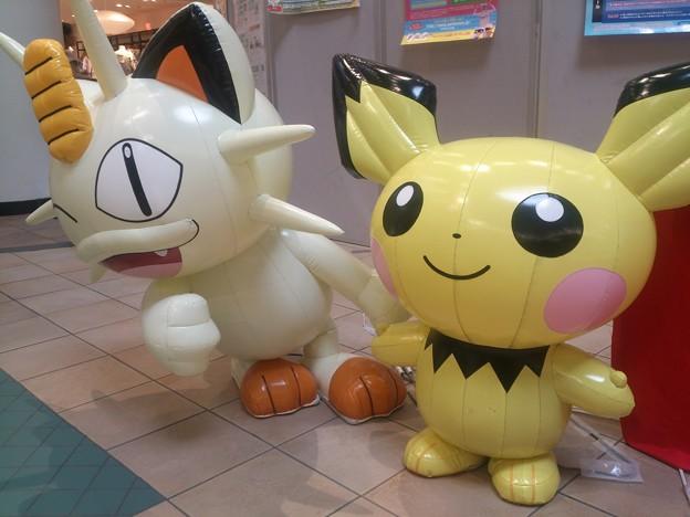 Photos: ニャース、ピチュー ポケモンセンターなつまつり in ららぽーとTOKYO-BAY