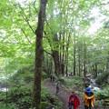 Photos: 不易の滝へ向かう