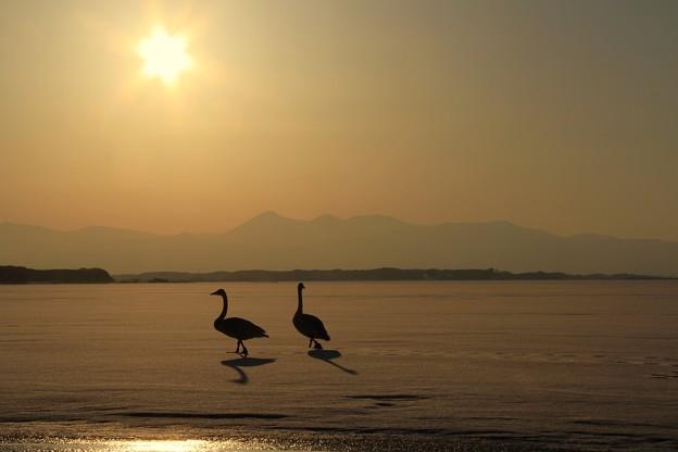 小川原湖にて。