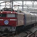 Photos: EF81 138+24系 ニコニコ超会議号