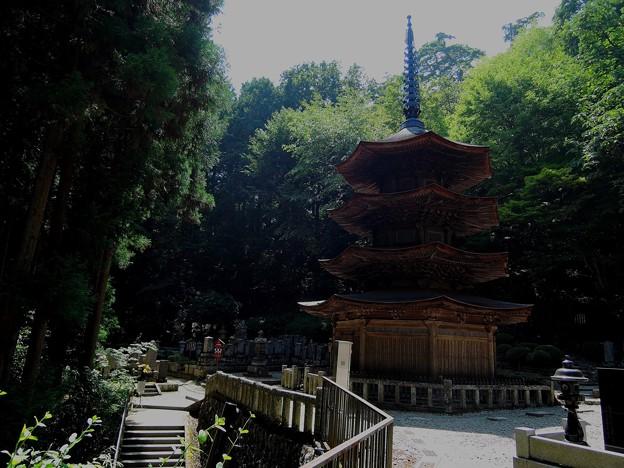 安楽寺#4