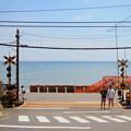Photos: 海と踏切