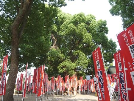 150615-住吉大社 (30)