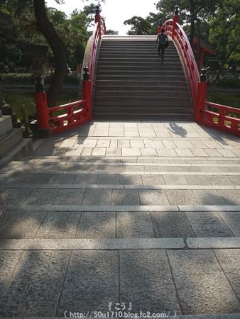 150615-住吉大社 (36)