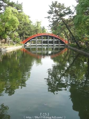 150615-住吉大社 (46)