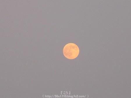 150731-お月さん (5)