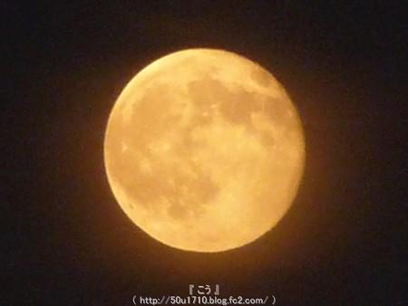 150801-お月さん (11)