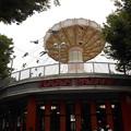 Photos: 豊島園の乗り物