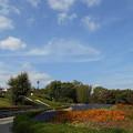 Photos: フルーツパーク公園 雲