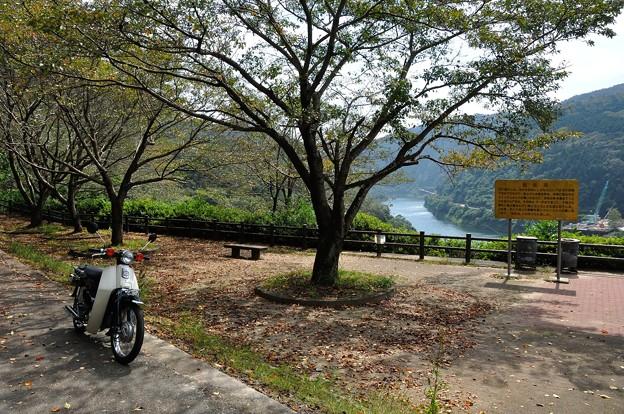 天ヶ瀬森林公園