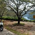 写真: 天ヶ瀬森林公園