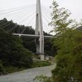 Photos: 奥多摩河合キャンプ状