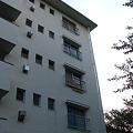 5階のあのおうちに行きたい!