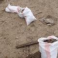 写真: 山元町 がれき撤去作業 ゴミの分別