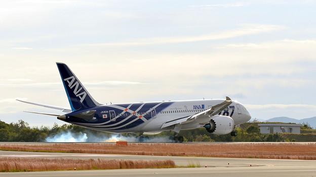 Boeing787?(Landing)