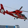 Photos: 名古屋市消防航空隊 JA6779 「ひでよし」 IMG_1631_2