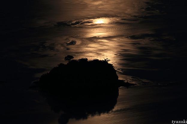 月光と潮流