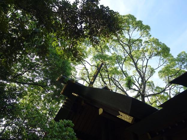 神明社 (横浜市保土ケ谷区神戸町)