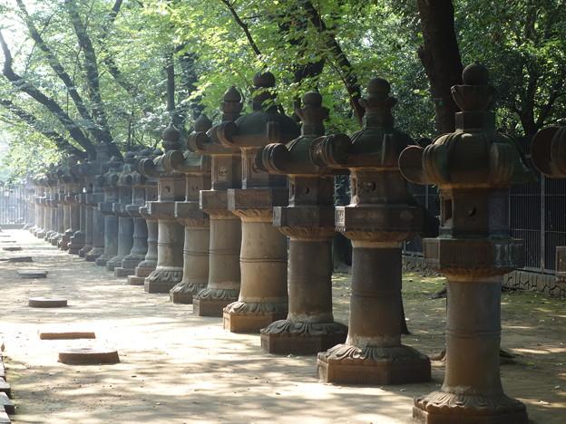 東照宮 (台東区上野公園)