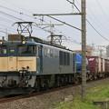 Photos: _MG_0593 EF64-1048 『鹿島貨物』 73レ