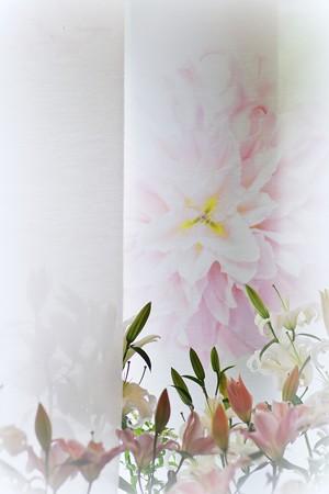 横浜山手西洋館 フェスタJUNE 花と器のハーモニー2015・    エリスマン邸。