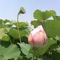 写真: KIMG0641(302KC)