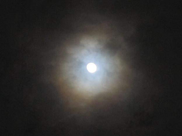 虹色の月明かり1