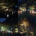 Photos: 高雄