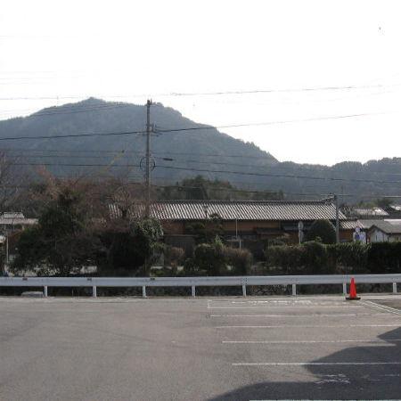 Photos: 柘植