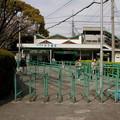 Photos: 甲子園