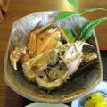 Photos: 毛蟹