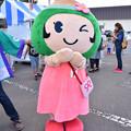 Photos: DSC_7574