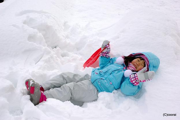 写真: 雪のお布団
