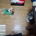 Photos: んっ!?