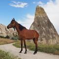写真: 馬の耳東風(あいのかぜ)吹く谷の径 Chimney rock & Horse