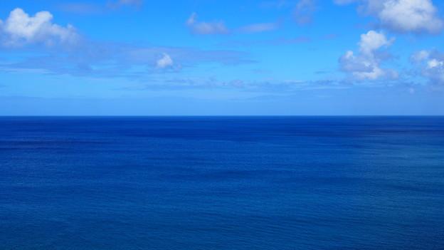 今までで一番綺麗な海。