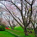 Photos: 紫雲出山(香川県)登山 ♪