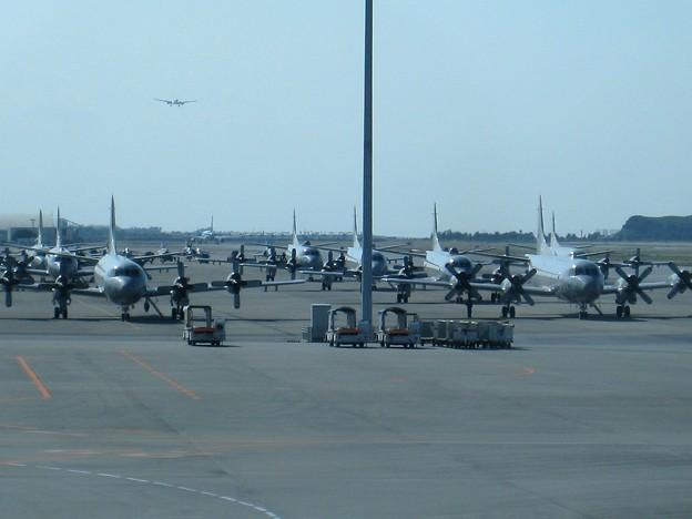 沖縄那覇空港20081201