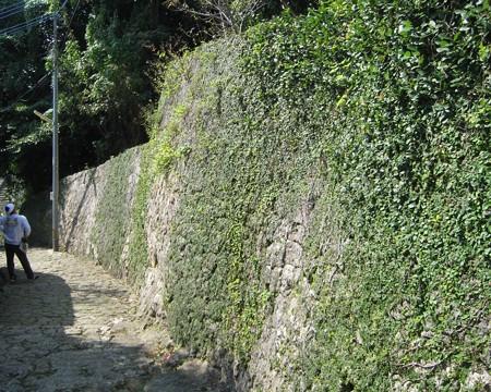 沖縄金城町石畳200811-04