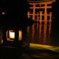 写真: 宮島夜の部