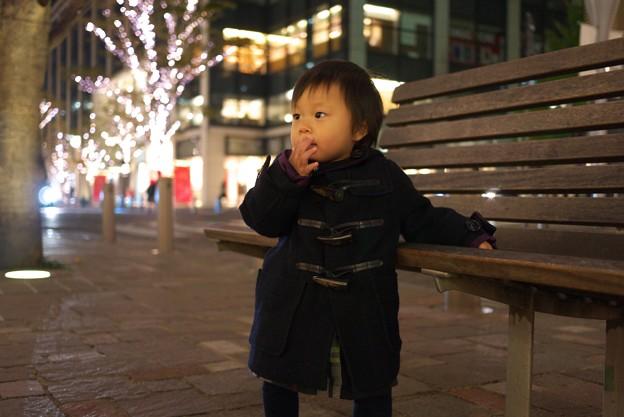 2011.11.27 丸の内仲通り duffel coat 1歳4ヶ月の淑女