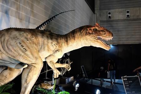 2015.07.27 2015 ヨコハマ恐竜博 アロサウルス 動く復元模型