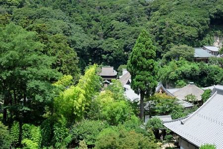 2015.08.09 円覚寺 如意庵から舎利殿