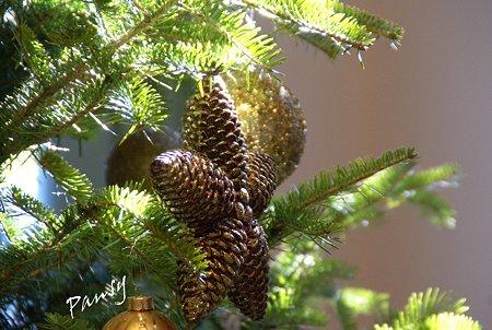 Christmas Season..27