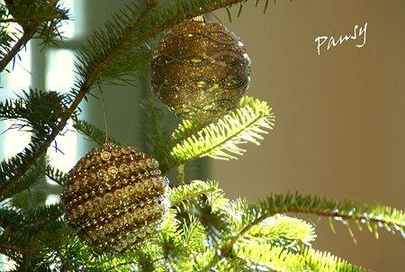 Christmas Season..30