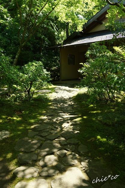 東慶寺~水無月-261