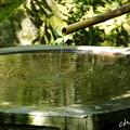 Photos: 東慶寺~水無月-263