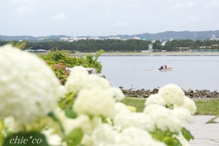 八景島-353